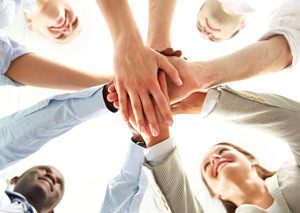 Group of Professionals during a team building exercise